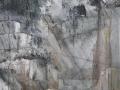 Naked tooth-2012-tecnica mista su tela-100 x 70 cm..JPG